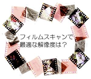FilmScan.jpg