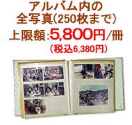 1冊250枚までのアルバム:上限額 5,800円(税込6,380円)/冊